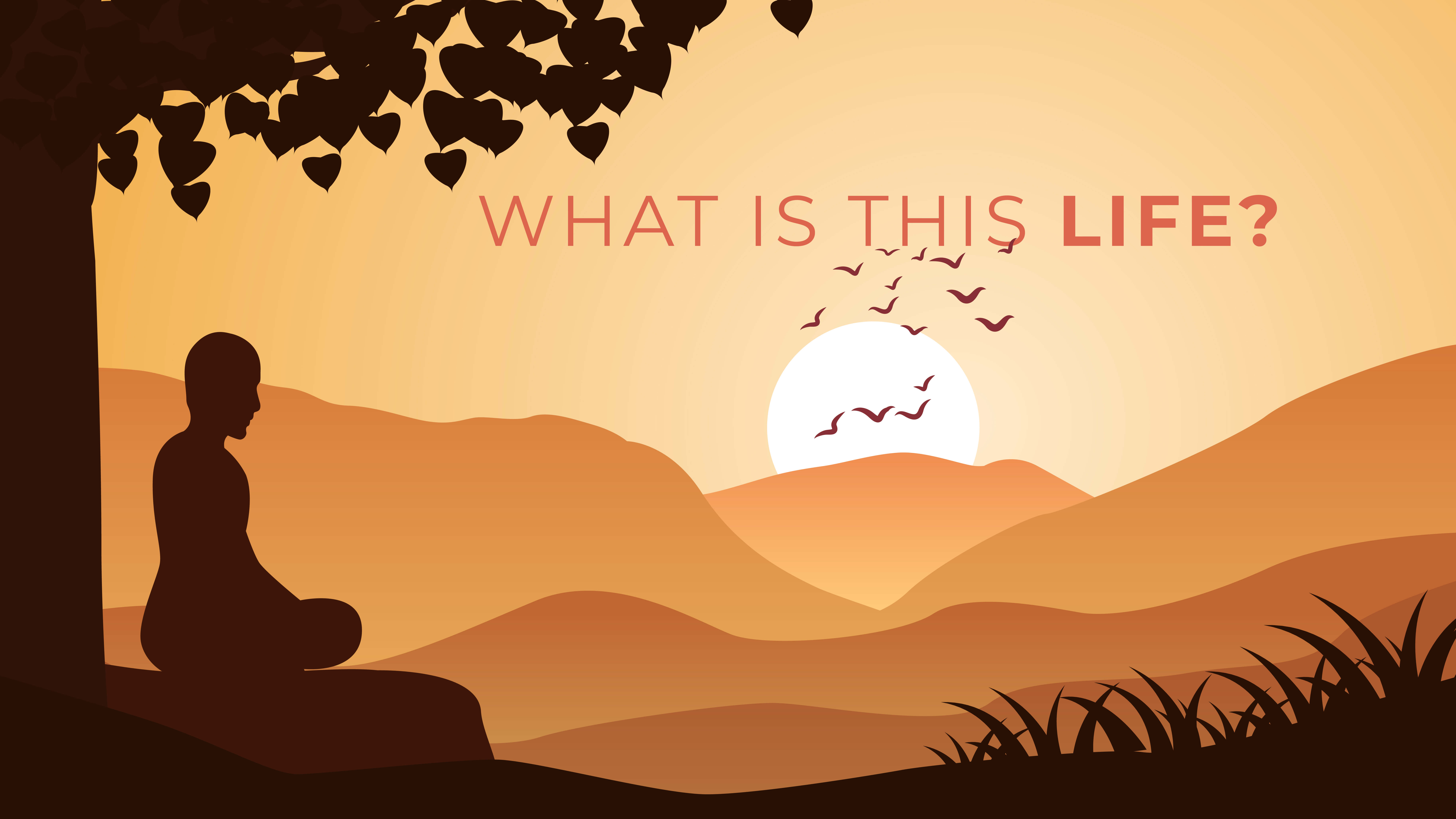 What is this Life really about? sameer kamboj